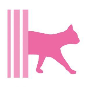 kattenherplaatsing-kattenvoorlichting-kattengedrag-kattenvoeding-kat-kitten-kittens-adopteren-aanmeldformulier-formulier-wachtlijst-adoptie-kat