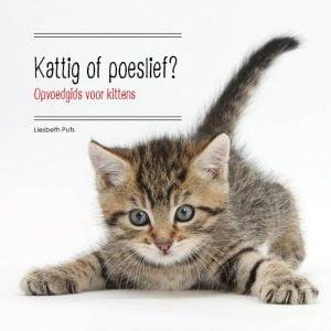 boekpromotie-kattig-of-poeslief-liesbeth-puts-boekentip-kattenherplaatsing