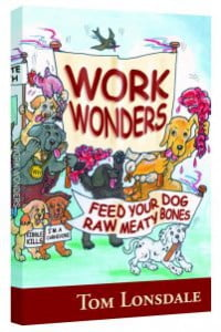 workwonders-small-boek-tom-lonsdale-februari-maand-gebitsverzorging