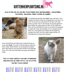kattenkrant-september-oktober-2018-kattenherplaatsing-aandacht-voor-de-herplaatsers