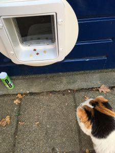 leren-kattenluik-snoepjes-chip-klik-geluid-kattenherplaatsing