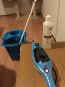 kamer-opvang-poes-kat-kattenvoorlichting-schoonmaken-ontsmetten