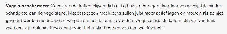 Tijdig-castreren-kat-vermindert-vogelsterfte-vogelmoordenaar