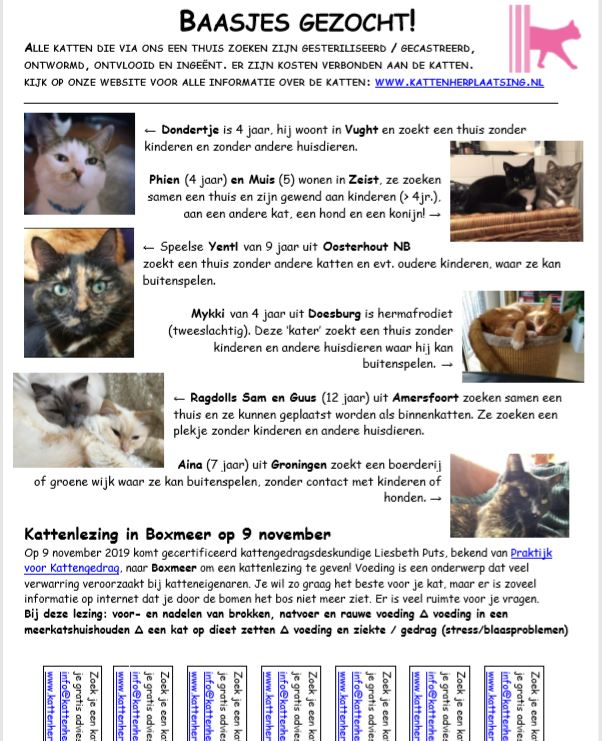 kattenkrant-kattenherplaatsing-oktober-2019