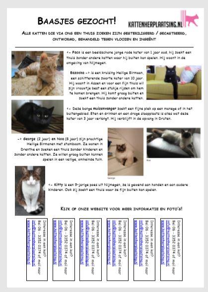 kattenkrant-kattenherplaatsing-aandacht-herplaatsers
