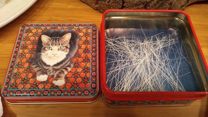 kattenvoorlichting-snorharen-verzameling-larissa-kat