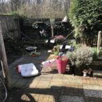 spike-chloe-tuin-spelen-kattenherplaatsing (13)