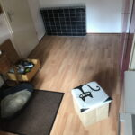 opvangkamer-kattenopvang-cuijk-kattenvoorlichting-kattenherplaatsing (2)