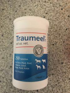 traumeel-dieren-kattenvoorlichting