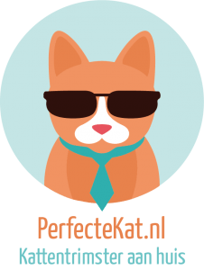 logo-perfectekat-nl-kattenvoorlichting-interview-desiree