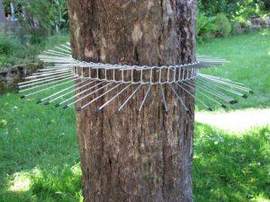 kattengordel-waveka-kattenvoorlichting-tuin-katten