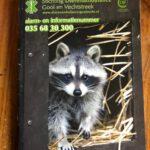 kattenherplaatsing-media-dierenambulance-gooi-vechtstreek-kobus