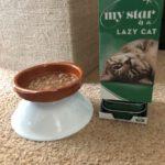 oudere-kat-eten-vanaf-verhoging-tips-kattenvoorlichting