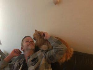 opvang-bugsy-marieke-kattenherplaatsing